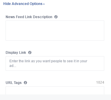 instagram ads advanced options